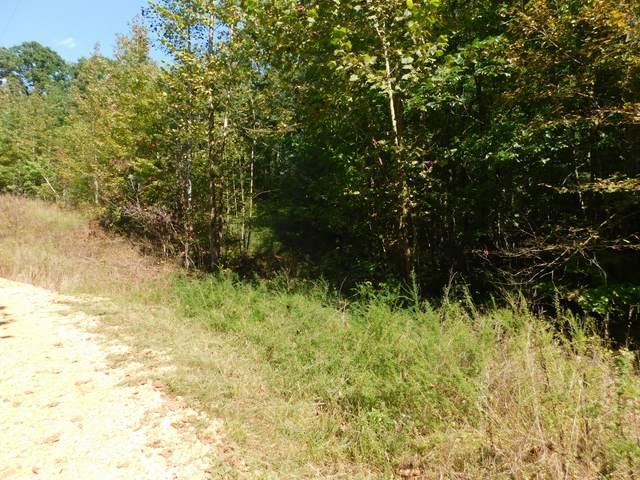 0 Dogwood Cir, Waverly, TN 37185 (MLS #RTC2299445) :: Village Real Estate