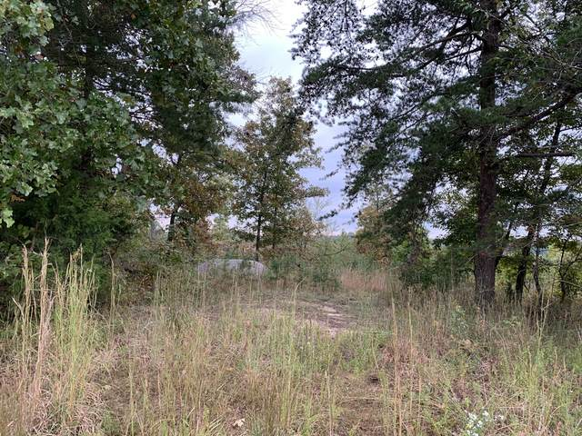 10 Keys Branch Rd E, Nunnelly, TN 37137 (MLS #RTC2299598) :: Village Real Estate