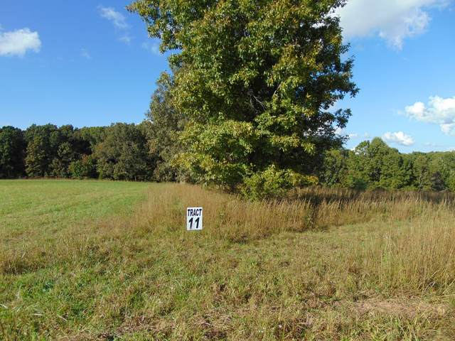 0 Northpoint Dr, Summertown, TN 38483 (MLS #RTC2299779) :: Team Wilson Real Estate Partners