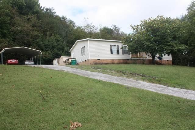 2048 Sugar Tree Dr, Lewisburg, TN 37091 (MLS #RTC2300359) :: Fridrich & Clark Realty, LLC