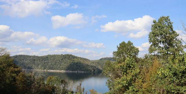 81 Harbor Pointe Dr, Silver Point, TN 38582 (MLS #RTC2300467) :: Benchmark Realty