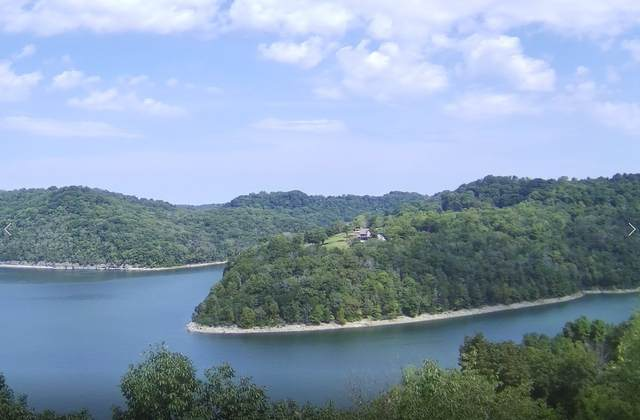 86 Harbor Pointe Dr, Silver Point, TN 38582 (MLS #RTC2300471) :: Benchmark Realty