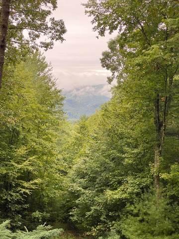 0 Bear Ridge Dr, Butler, TN 37640 (MLS #RTC2300783) :: The Miles Team | Compass Tennesee, LLC