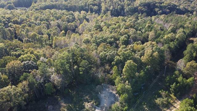 0 Happy Hollow Rd, Hohenwald, TN 38462 (MLS #RTC2300977) :: Movement Property Group
