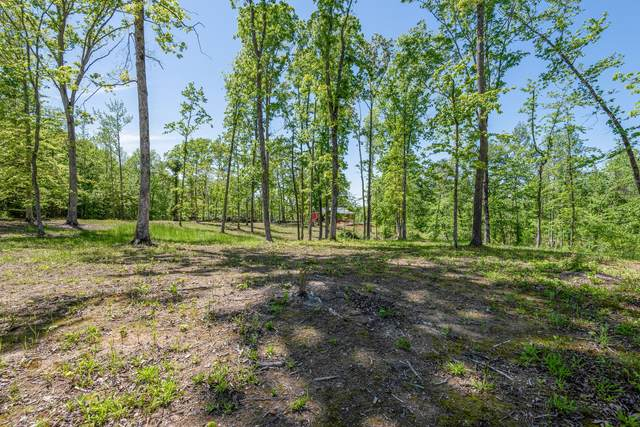 15 Driftwood Dr, Lobelville, TN 37097 (MLS #RTC2301810) :: Ashley Claire Real Estate - Benchmark Realty