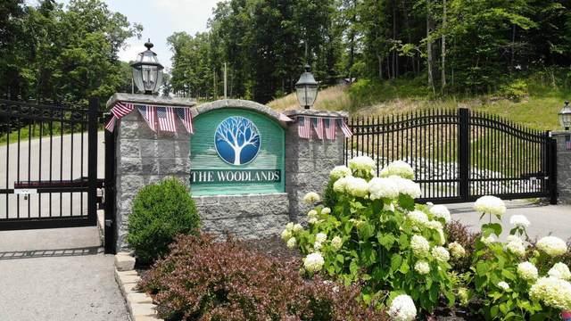 0 Ridgewood Dr, Mc Ewen, TN 37101 (MLS #RTC2302338) :: Randi Wilson with Clarksville.com Realty