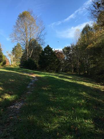 1137 James Brown Rd, Westmoreland, TN 37186 (MLS #RTC2302746) :: Nashville on the Move
