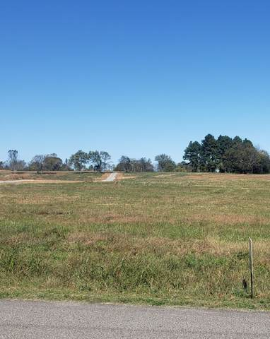 0 Butler Rd, Columbia, TN 38401 (MLS #RTC2303531) :: Kimberly Harris Homes