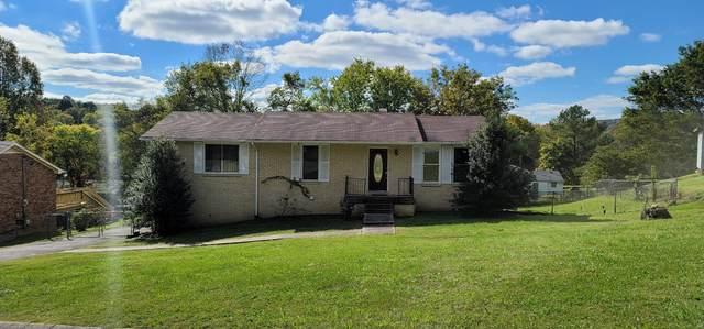 313 Townes Dr, Nashville, TN 37211 (MLS #RTC2303637) :: EXIT Realty Bob Lamb & Associates