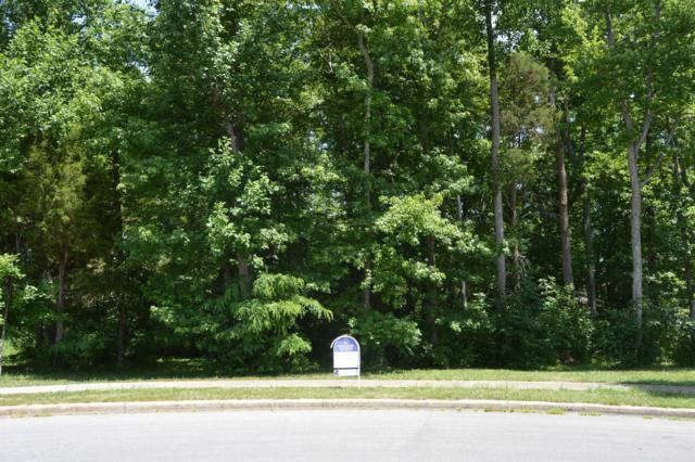 144 Danford Drive, Clarksville, TN 37043 (MLS #1794370) :: REMAX Elite