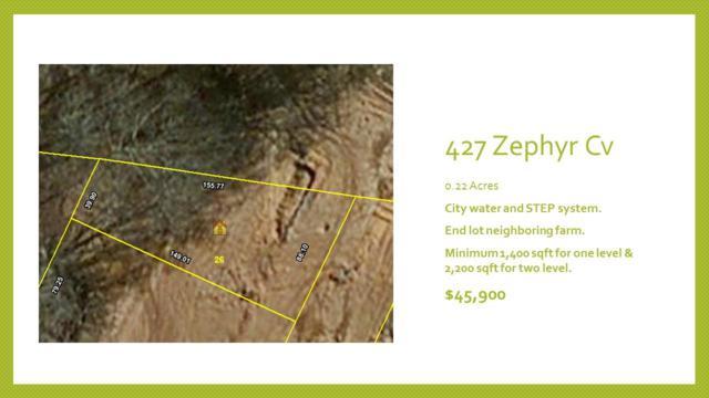 427 Zephyr Cv, Lebanon, TN 37087 (MLS #1831921) :: KW Armstrong Real Estate Group