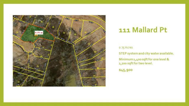 111 Mallard Pt, Lebanon, TN 37087 (MLS #1831925) :: KW Armstrong Real Estate Group