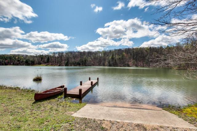 1 Long Mountain, McMinnville, TN 37110 (MLS #RTC1838380) :: Nashville on the Move
