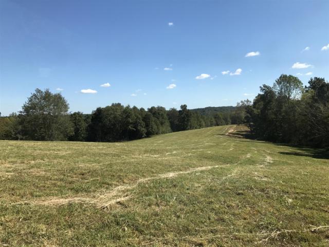 816 Bellwood Hollow Rd, Indian Mound, TN 37079 (MLS #1870827) :: EXIT Realty Bob Lamb & Associates