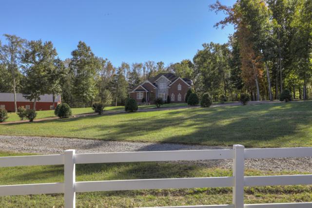 407 Woodland Trl, Smyrna, TN 37167 (MLS #1873349) :: DeSelms Real Estate