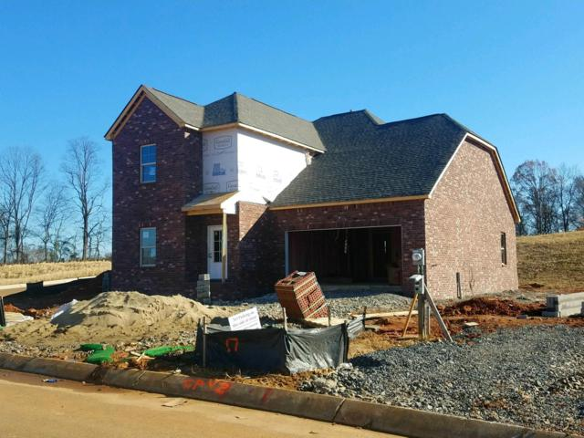 188 Telavera Drive - Lot 18, White House, TN 37188 (MLS #1882081) :: CityLiving Group