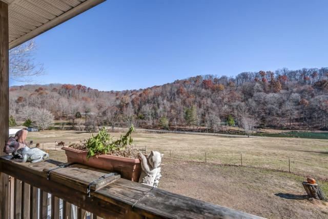 4897 Scott Branch Rd, Hampshire, TN 38461 (MLS #1883245) :: CityLiving Group