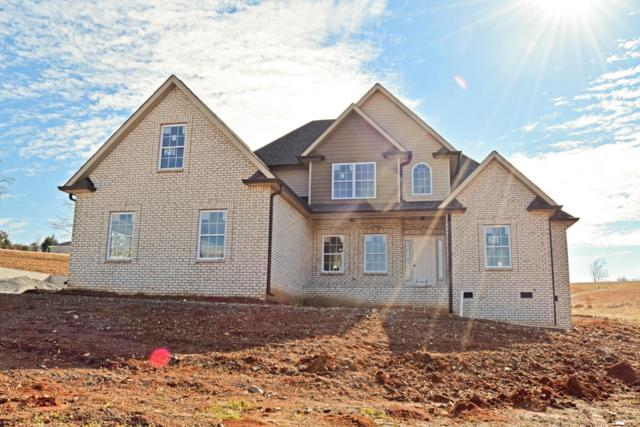 987 Red Bluff Way (Lot 29), Adams, TN 37010 (MLS #1890105) :: Hannah Price Team
