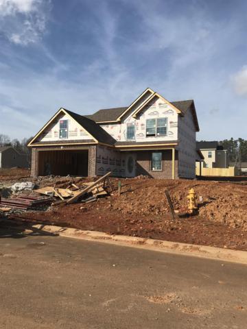148 Rossview Pl, Clarksville, TN 37043 (MLS #1890891) :: DeSelms Real Estate