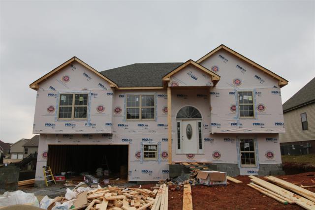 641 Fields Of Northmeade, Clarksville, TN 37042 (MLS #1900170) :: Berkshire Hathaway HomeServices Woodmont Realty