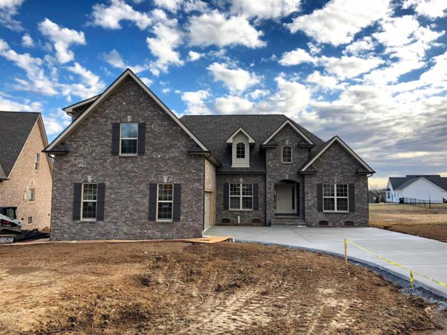 637 Twin View Drive - Lot 27, Murfreesboro, TN 37128 (MLS #1900666) :: Berkshire Hathaway HomeServices Woodmont Realty