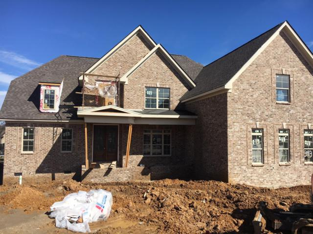 6006 Wallaby Court (393), Spring Hill, TN 37174 (MLS #1901121) :: CityLiving Group