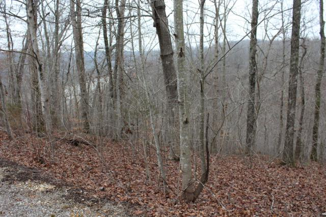 0 Harbor Green Pl (Lot 5), Sparta, TN 38583 (MLS #1901736) :: CityLiving Group