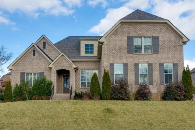 1041 Alice Springs Cir, Spring Hill, TN 37174 (MLS #1902816) :: CityLiving Group