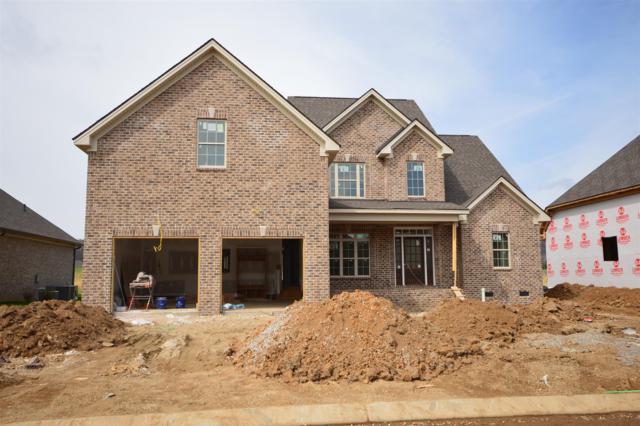 3024 Grunion Ln (354), Spring Hill, TN 37174 (MLS #1905048) :: Team Wilson Real Estate Partners
