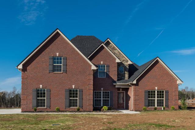 1115 Sycamore Leaf Way, Murfreesboro, TN 37129 (MLS #1905854) :: NashvilleOnTheMove   Benchmark Realty