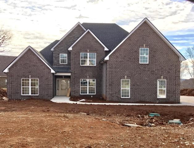 1111 Sycamore Leaf Way, Murfreesboro, TN 37129 (MLS #1905866) :: NashvilleOnTheMove   Benchmark Realty