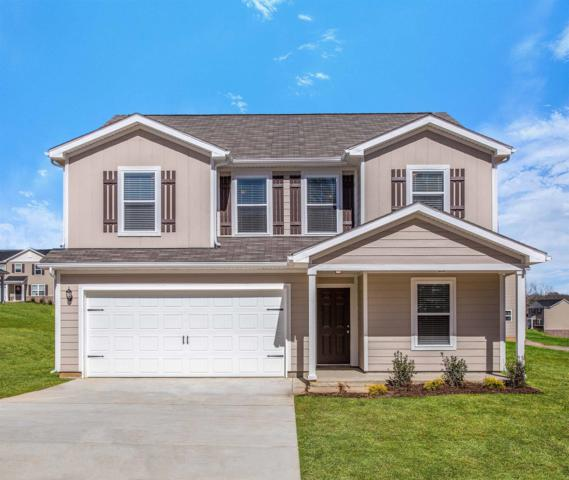 2317 Bee Hive Drive, Columbia, TN 38401 (MLS #1910855) :: NashvilleOnTheMove | Benchmark Realty