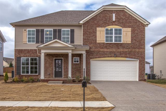 1025 Solomon Ln #245Hillsboro, Spring Hill, TN 37174 (MLS #1911552) :: Nashville on the Move