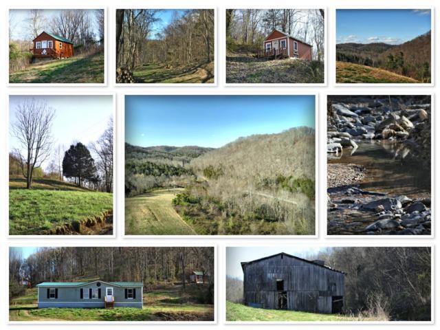 3343 Sycamore Creek Rd, Woodbury, TN 37190 (MLS #1914128) :: EXIT Realty Bob Lamb & Associates