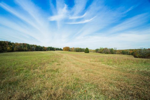 235 Von Tress Rd, Cypress Inn, TN 38452 (MLS #1919183) :: EXIT Realty Bob Lamb & Associates