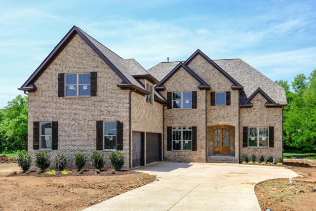 1009 Gadwall Lane (Lot 304), Spring Hill, TN 37174 (MLS #1920154) :: REMAX Elite