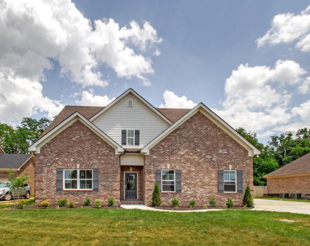241 Mcclaran Place- Lot 155, Murfreesboro, TN 37128 (MLS #1924316) :: Berkshire Hathaway HomeServices Woodmont Realty