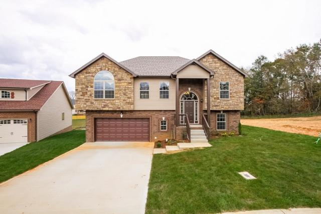 314 Liberty Park, Clarksville, TN 37042 (MLS #1924381) :: Berkshire Hathaway HomeServices Woodmont Realty