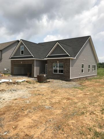 101 Sycamore Hill Dr, Clarksville, TN 37042 (MLS #1927590) :: REMAX Elite
