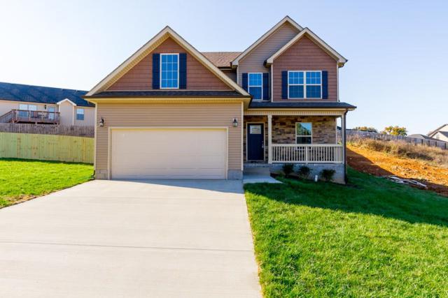 156 Rossview Pl, Clarksville, TN 37043 (MLS #1931582) :: EXIT Realty Bob Lamb & Associates