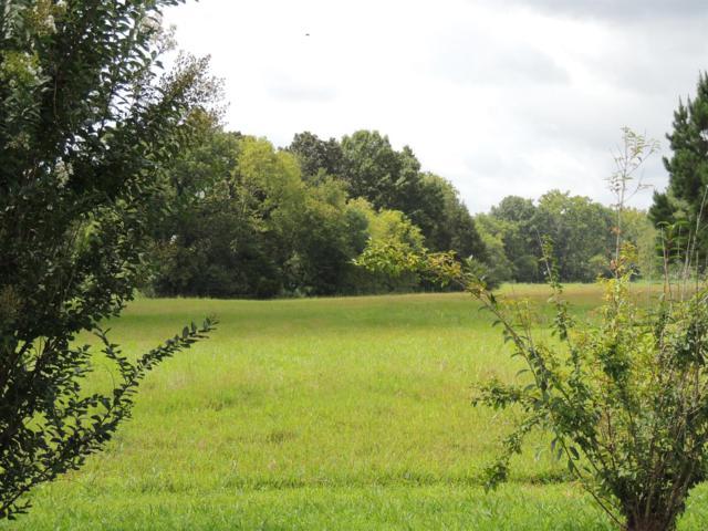 6713 Flat Creek Rd, College Grove, TN 37046 (MLS #1931709) :: REMAX Elite