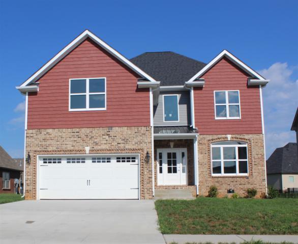 1146 N Ja Tate Dr, Clarksville, TN 37043 (MLS #1934446) :: RE/MAX Choice Properties