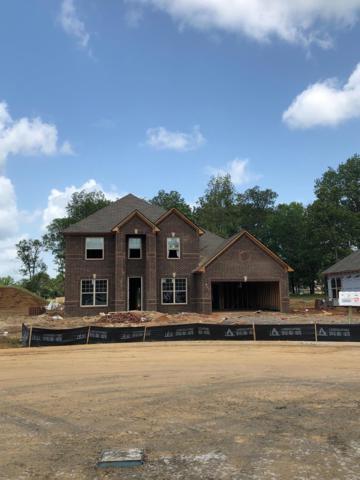 1413 Blackman Woods Ct Lot 97O, Murfreesboro, TN 37129 (MLS #1935035) :: REMAX Elite
