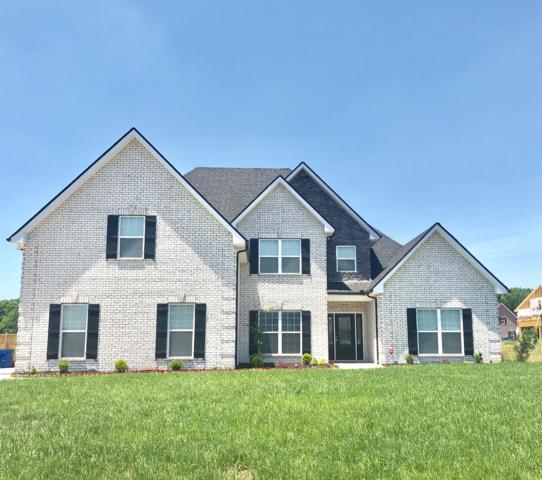 1001 Sycamore Leaf Way, Murfreesboro, TN 37129 (MLS #1937259) :: Berkshire Hathaway HomeServices Woodmont Realty