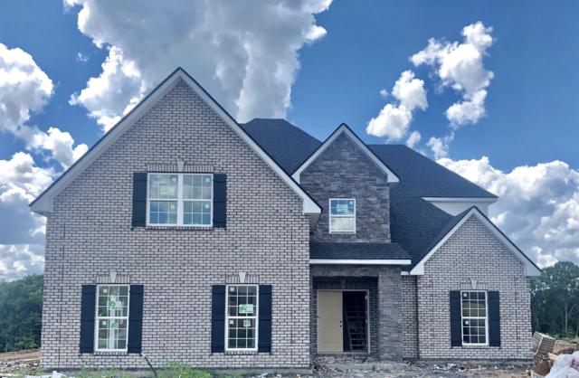 1123 Sycamore Leaf Way, Murfreesboro, TN 37129 (MLS #1937276) :: Nashville On The Move