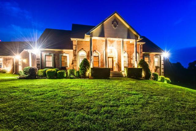 7231 Shoals Branch Road, Primm Springs, TN 38476 (MLS #1940797) :: Team Wilson Real Estate Partners