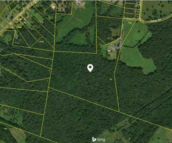 291 Baker Rd, Dickson, TN 37055 (MLS #1942353) :: Berkshire Hathaway HomeServices Woodmont Realty