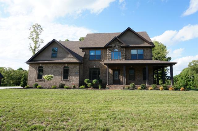1601 Wonderboy Ct, Clarksville, TN 37042 (MLS #1943584) :: The Milam Group at Fridrich & Clark Realty
