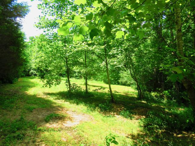 0 Trough Springs Rd, Adams, TN 37010 (MLS #1943644) :: Team Wilson Real Estate Partners