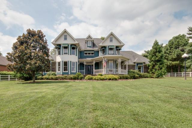 113 Bluegrass Cir, Hendersonville, TN 37075 (MLS #1946429) :: Nashville On The Move